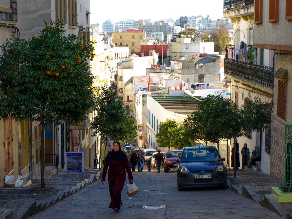 fot./Ana Isabel González Mariscal, Creative Commons – Uznanie autorstwa 3.0 Polska (CC BY 3.0 PL) http://creativecommons.org/licenses/by/3.0/pl