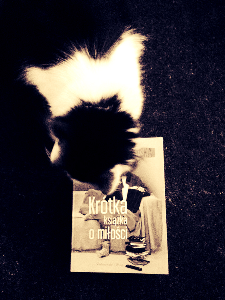 Krótka książka o miłości 4