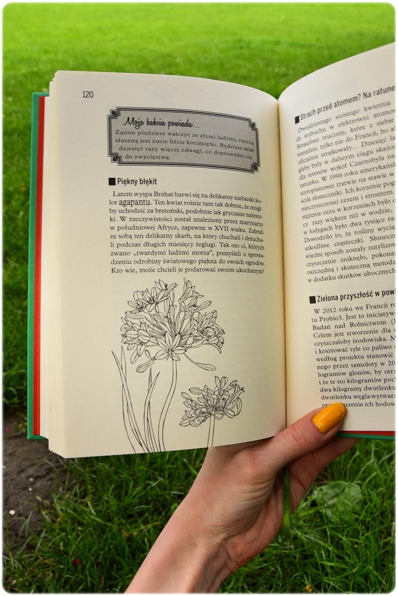 Sekrety roślin fot. Agnieszka Wielińska (1)