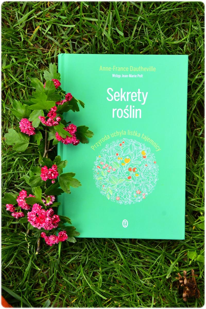 Sekrety roślin fot. Agnieszka Wielińska (2)