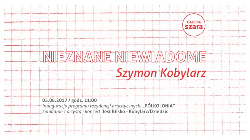 kobylarz_galeria szara