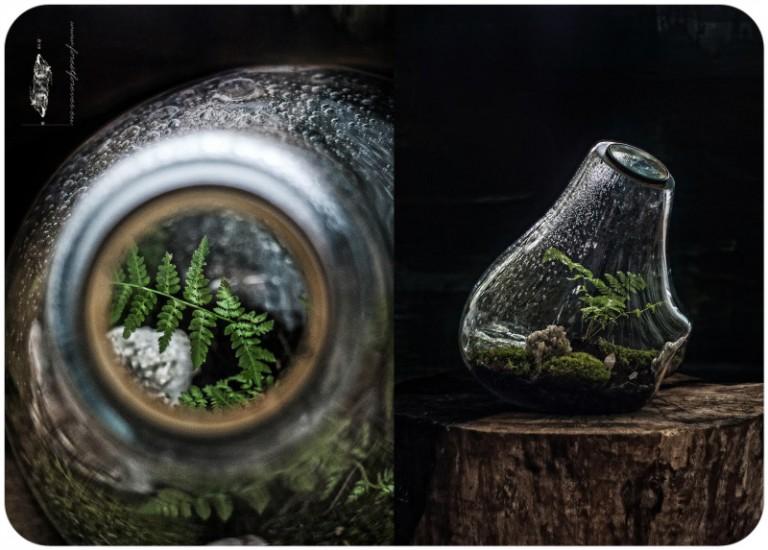 materiały artystki, fot. Łukasz Smudziński
