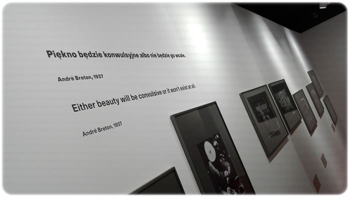 Zwrotnica_Muzeum Śląskie (7)