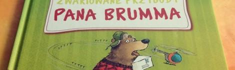 Reflektorek #18: Zabawne przygody misia Brumma - krótkie historie dla najmłodszych czytelników